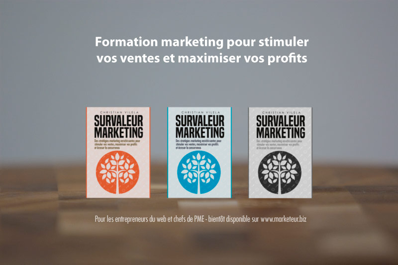 survaleur-marketing-guide-cover-presentation01