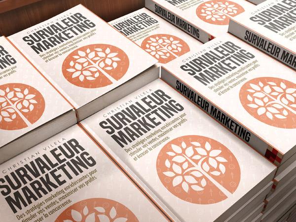 Survaleur marketing stratégies pour pme